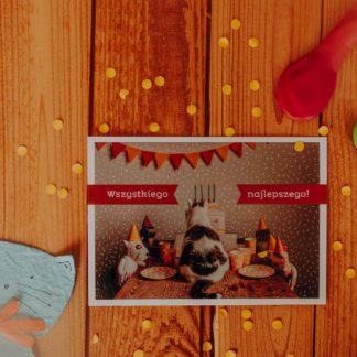 kartka urodzinowa dla kociarzy z kotkami