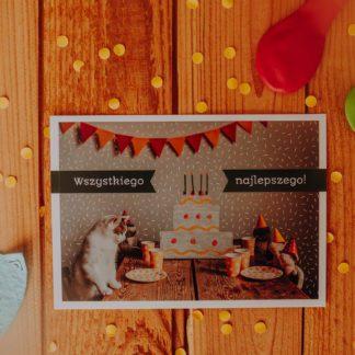 kartka urodzinowa z kotkiem i kłaczkami dla kociarzy
